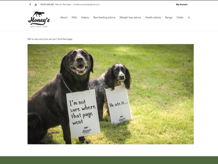 Screenshot of Honey's 404 Page